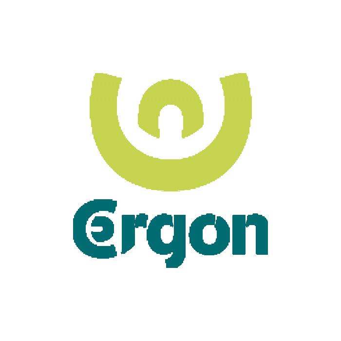 ergon-2.png